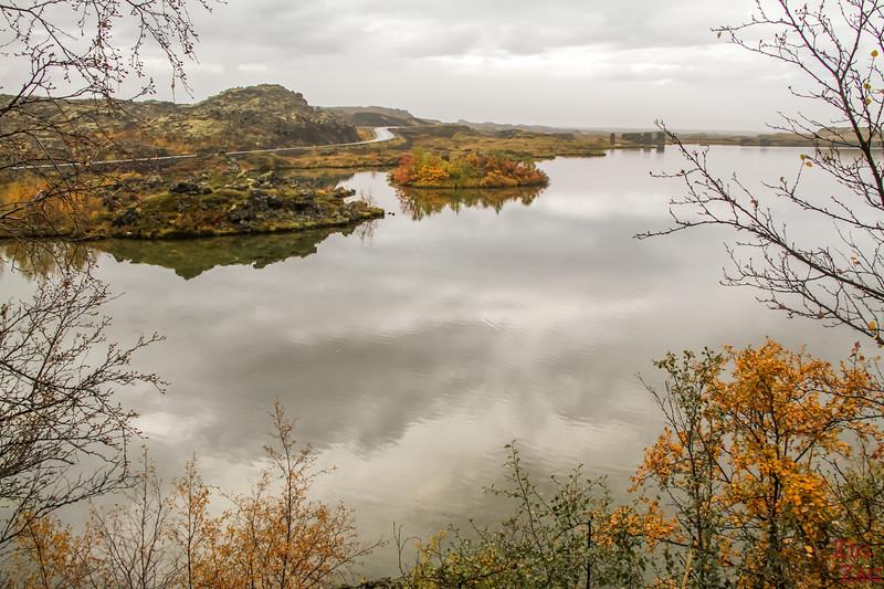Parc Hofdi Islande 1