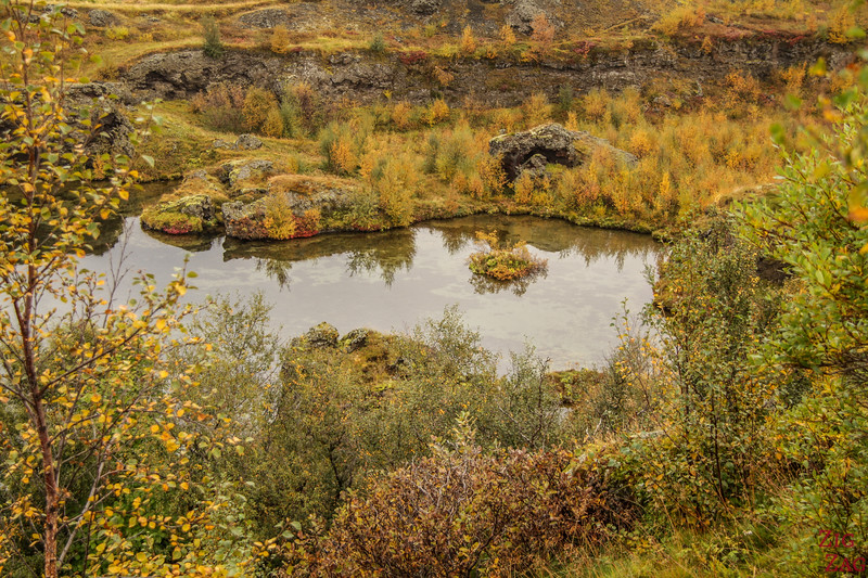 Park Hofdi Iceland