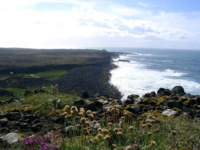 Cape Reykjanes