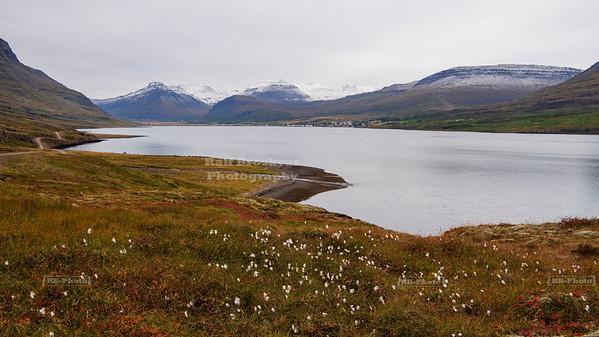 The town of Reyðarfjörður at the base of the fjord with the same name