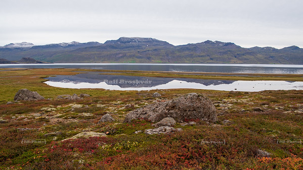Reflecting pool in Southeast Iceland