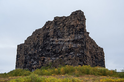 Ásbyrgi is a horseshoe-shaped canyon in Northeast Iceland