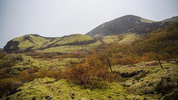 Grábrókargígar National Monument near Bifröst in the Western Region of Iceland