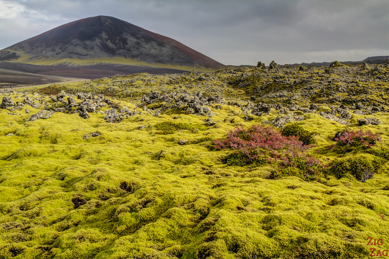 Berserkjahraun lava field, Iceland photo 4