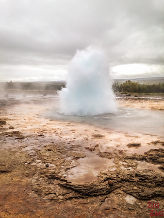 Pictures of Iceland - Stroke geyser eruption
