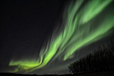 St Patricks Day Aurora, Hella, Iceland