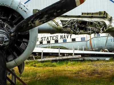 Navy Plane Carcass- Iceland
