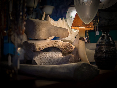 Whale bones in a Reykjavik antique shop.