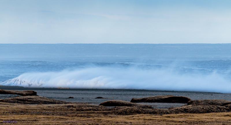 Wiindy Sea
