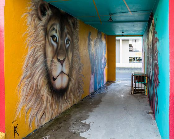 Lion street art