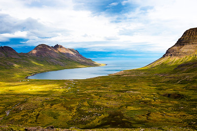Greenland Sheep Ranch- Iceland