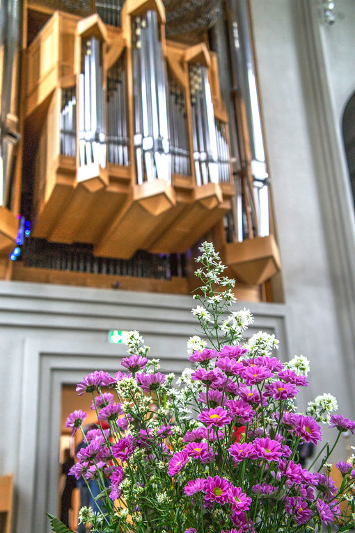 Flowers and organ pipes inside Hallgrimskirkja, Reykjavik, Iceland