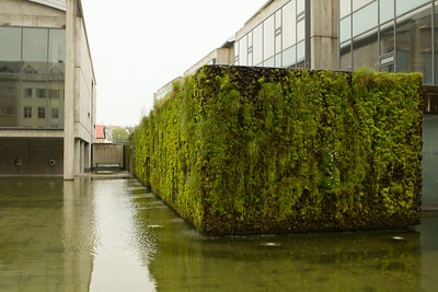 Beautiful mossy living fountain at the Reykjavík Town Hall. - Copyright (c) 2014 Daniel Noe