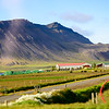 Icelandic farm  and horses from tour bus.