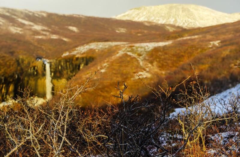 Svartifoss Water in Early Winter