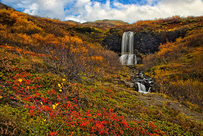 A small falls along the way to Glymur Falls - lovely fall colors along the ground...