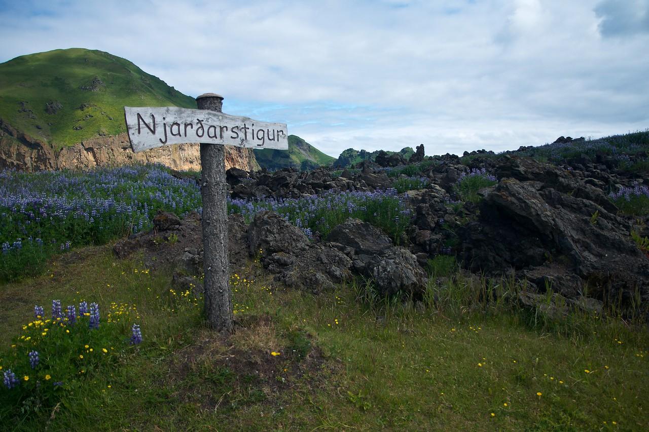 Iceland '17 -  1265