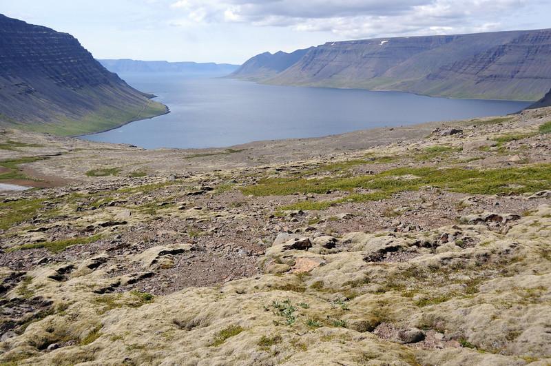 Head of the fjord at near Dynjandi.