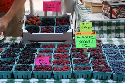 Berries, Berries, and More Berries