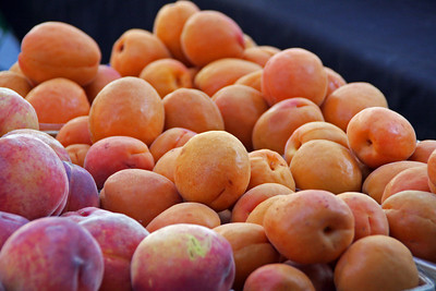 Beautiful Peaches and Apricots