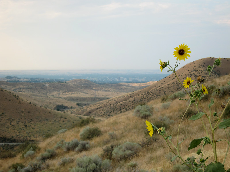 Looking back towards Boise.