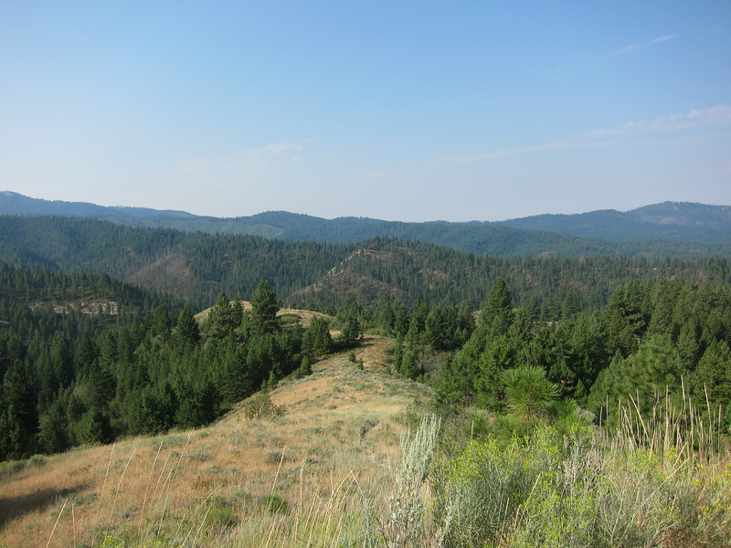 We spent the first part of this day riding on gravel Forest Service roads.