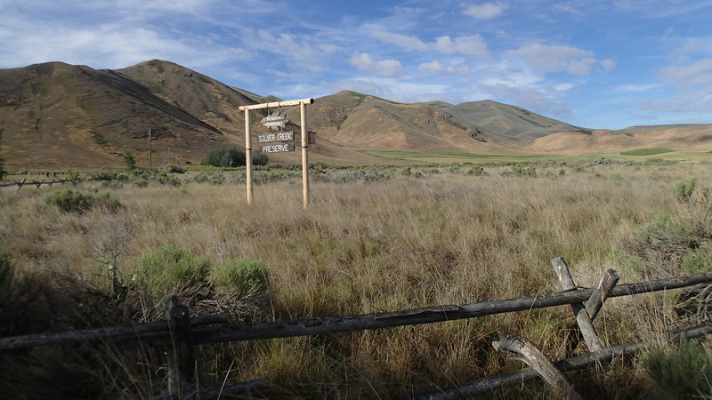 Silver Creek Preserve, maintained by the Nature Conservancy.  Near Picabo, Idaho.