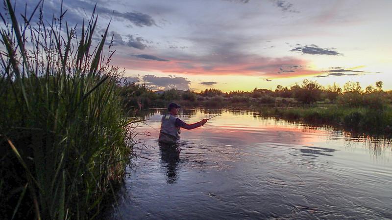 Fishing at dusk in Silver Creek, Idaho