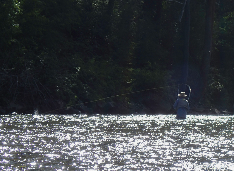 Me catching a brook trout in the Big Wood River, a bit south of Ketcham, Idaho