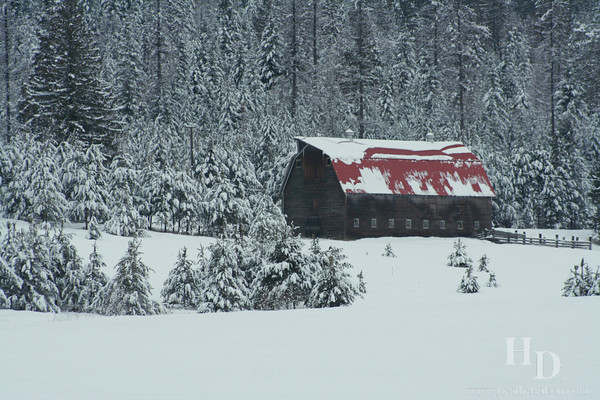 Snow covered barn in Northern Idaho, near Sandpoint.