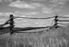 fence & clouds bull run Glch MT B&W 0534