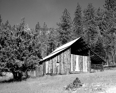 One of the barns at Campbell's Ferry on the Salmon River in Idaho. I can almost smell the pine trees. Really makes me want to go back there in May for the celebration of what would have been my great aunt Frances' 100th birthday.