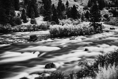 Payette River Rapids Black and White
