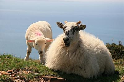Moeder en ... The Rosses, Ierland.