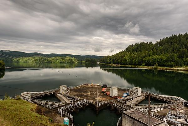 Riffe Lake at Mossyrock Dam