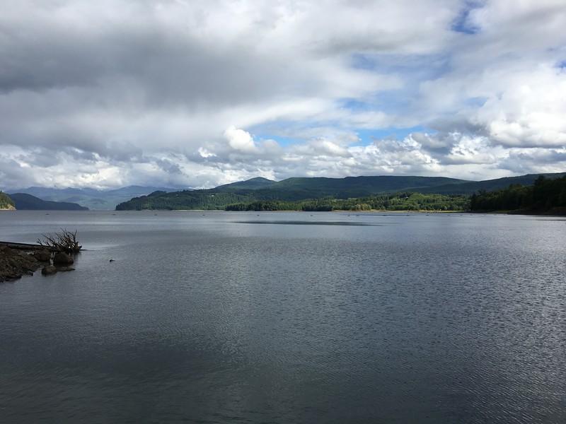 Riffe Lake