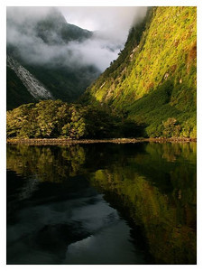 Arm hall-Doubtfull sound-Fjordland national park
