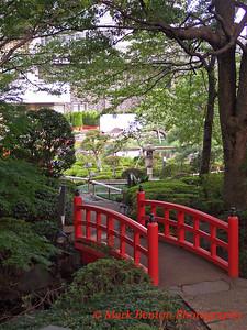 Bridge to Zen