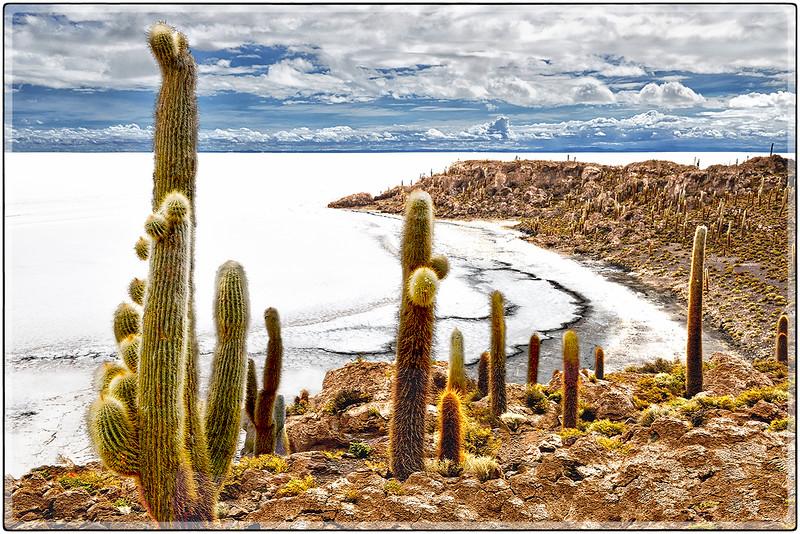 La Costa de La Isla Incahuasi