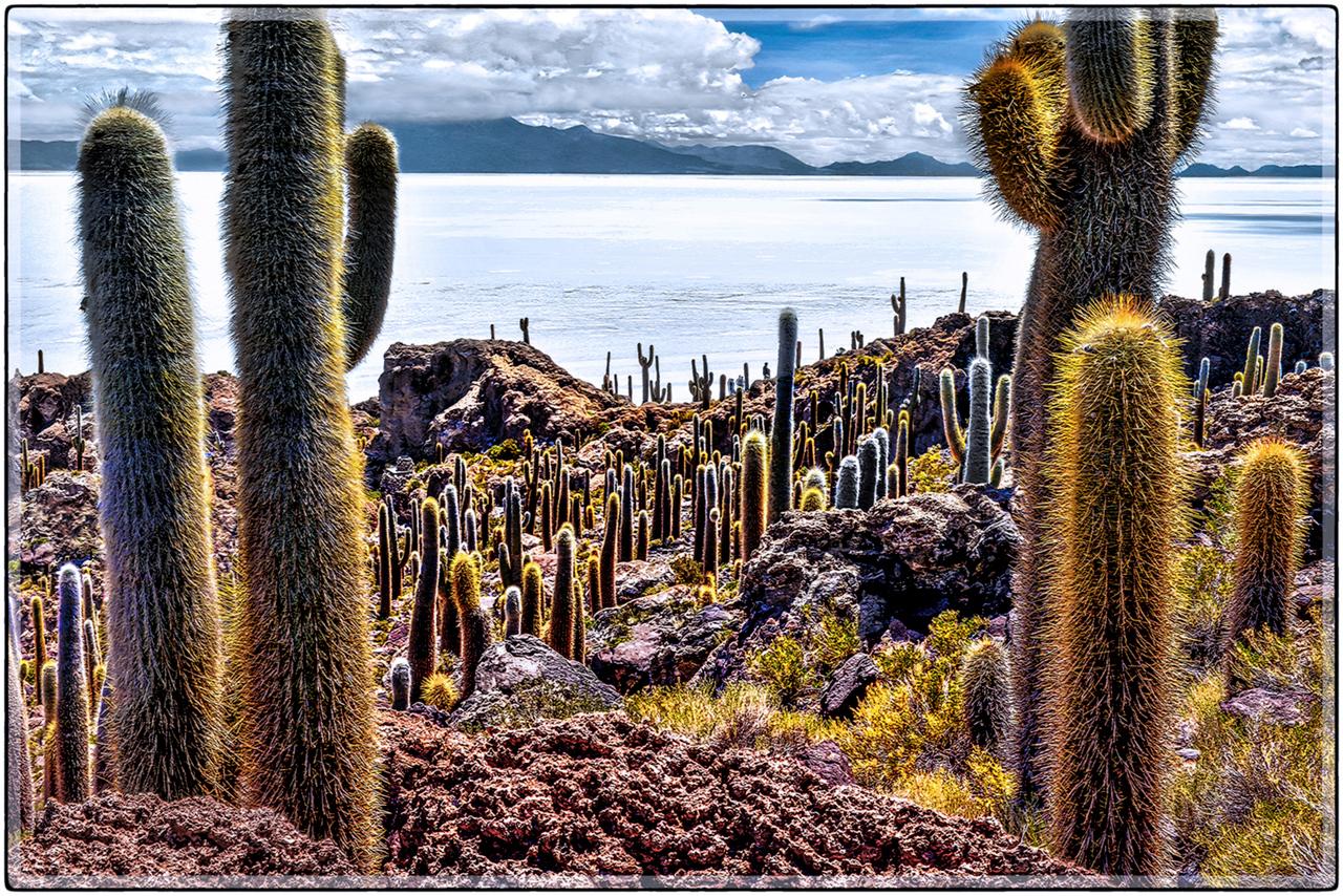 Poblado de Cactus, Incahuasi