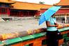 Seeking Shelter in Frobidden City