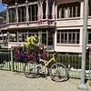 Cafes Shops Restaurants 61