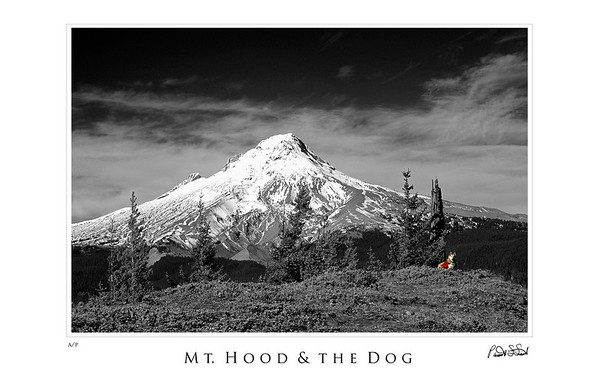 Mt Hood and the Dog