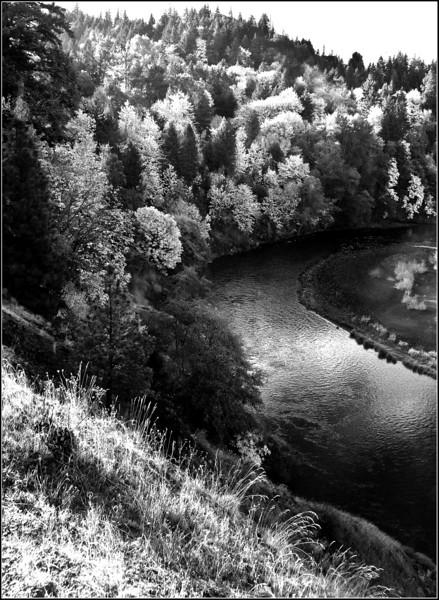 river IR B&W1