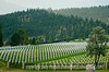 Veterans' Cemetery near Spearfish, SD; best viewed in the larger sizes