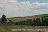 Custer State Park in South Dakota; best viewed in the largest sizes