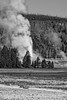 Castle Geyser in Yellowstone National Park erupting on June 14, 2010.