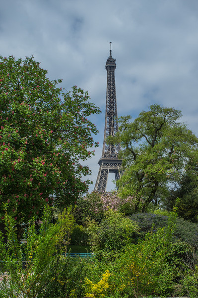 The Tour Eiffel from the Champ de Mars