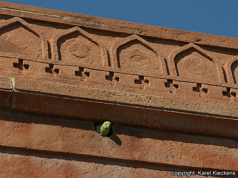 R_135_Fathepur Sikri