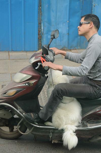 2011, Trip, China,Changsha (2)